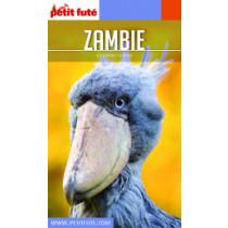 ZAMBIE 2020 - Le guide numérique