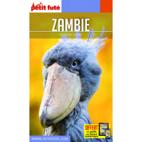 ZAMBIE 2020