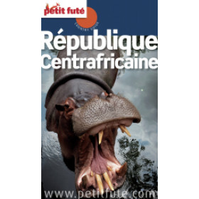 République Centrafricaine 2013