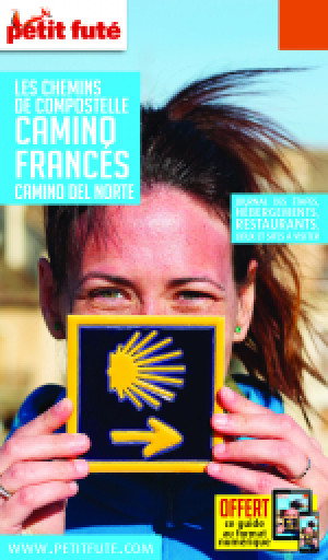 CHEMINS COMPOSTELLE - CAMINO FRANCES 2020